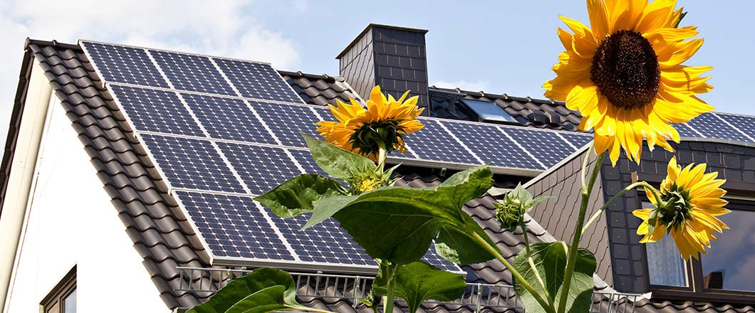 Make the Switch to Solar to Start Conserving Energy Today